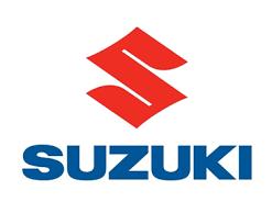 Suzuki Pistons & Rings